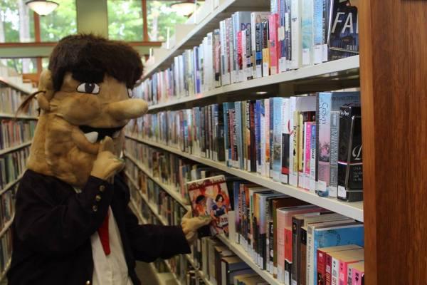 padd bookshelf