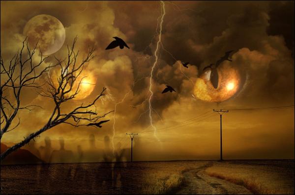 halloweenowl.png